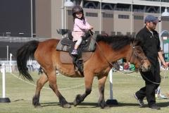190405 木曽馬乗馬体験-02