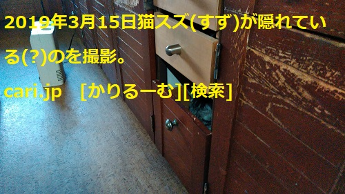 moblog_464bd291.jpg
