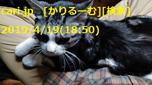 moblog_7800003b.jpg