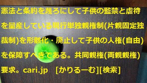 moblog_d94001da.jpg