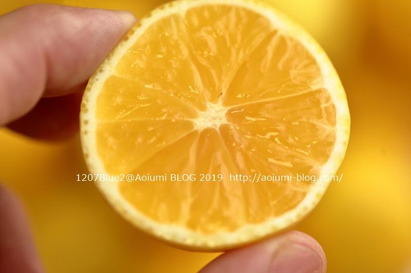 5D4_9767_190416_1207Blue.jpg