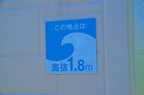 IMGP3615.jpg