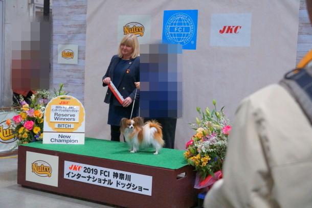 リリーちゃん チャンピオン00071689