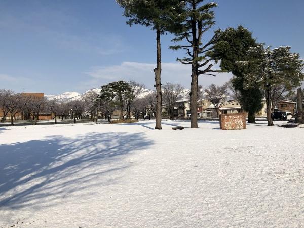 2019-04-02 なごり雪2
