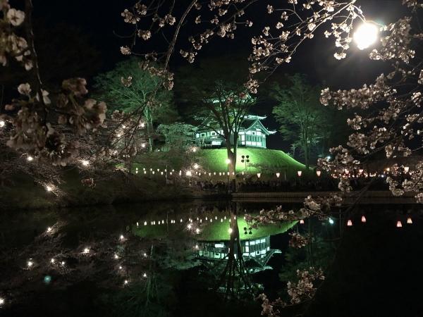 2019-04-06 夜桜1
