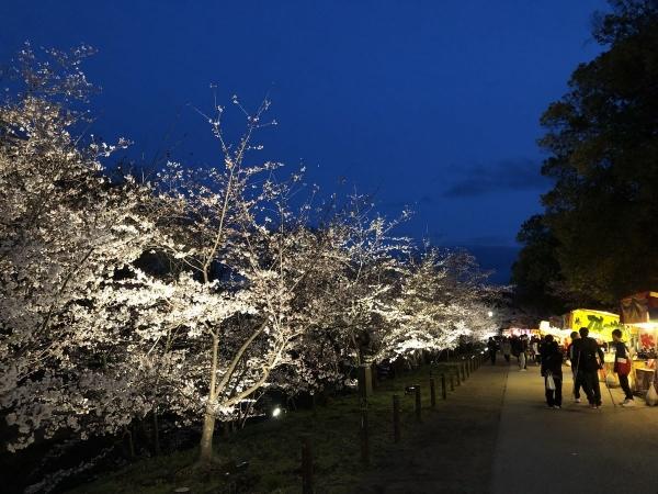 2019-04-11 上田城4