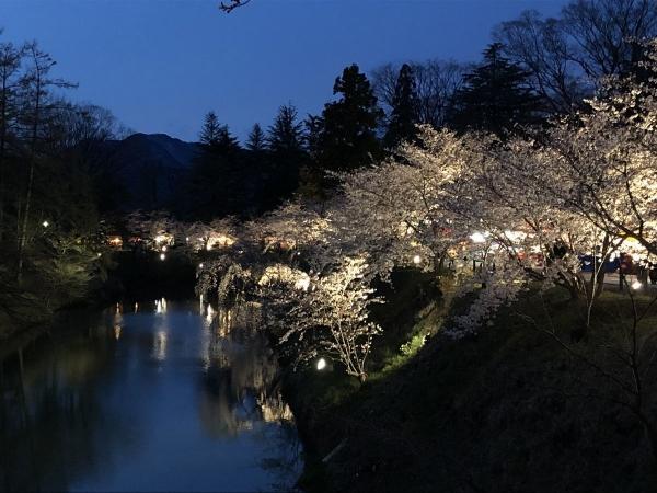 2019-04-11 堀に映る桜