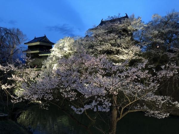 2019-04-11 上田城2