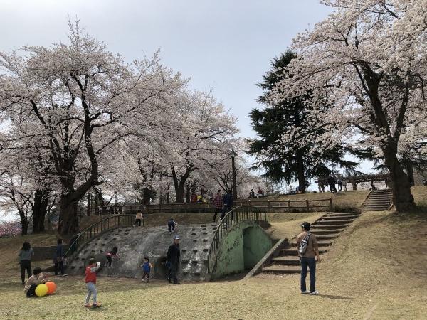 2019-04-14 経塚山4