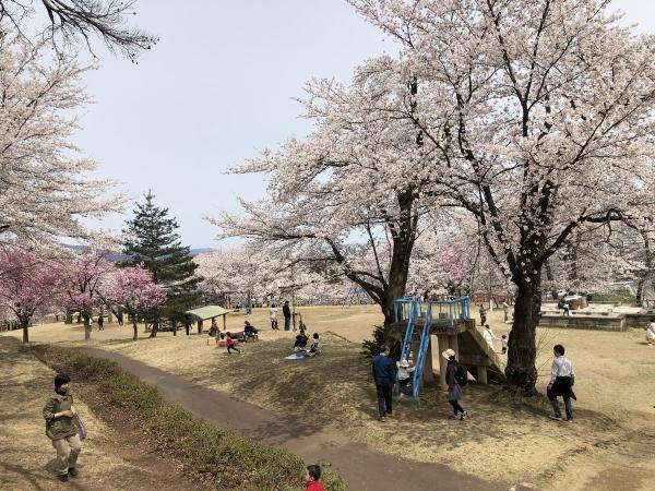 2019-04-14 経塚山1