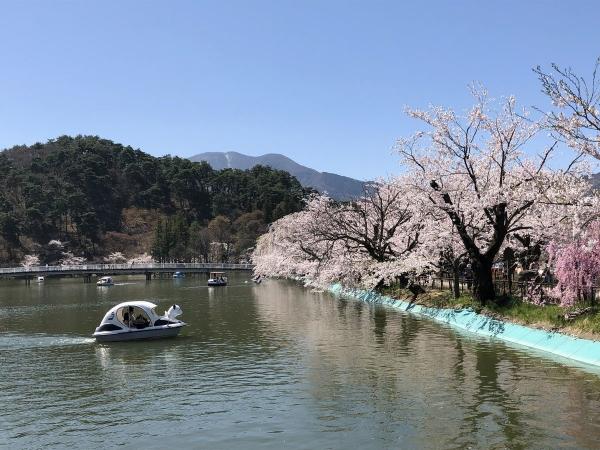 2019-04-20 臥龍公園1