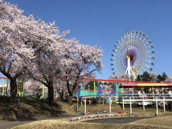 2019-04-20 松ヶ峯6