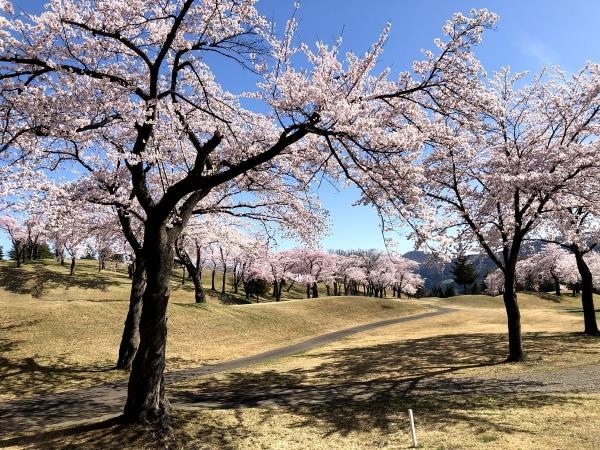 2019-04-20 松ヶ峯5