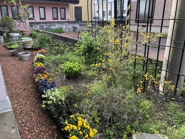 2019-04-28 高田世界館の庭