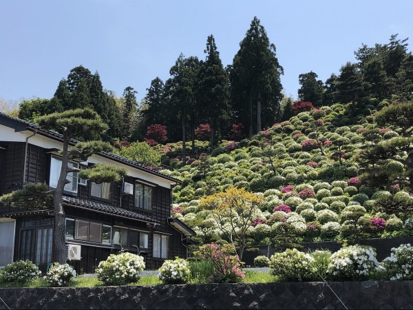 2019-05-13 金子さん自宅