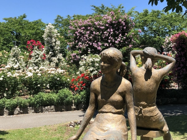 ブロンズ像とバラ2
