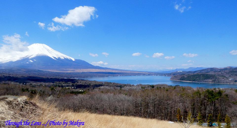 パノラマ台より富士山TZ1