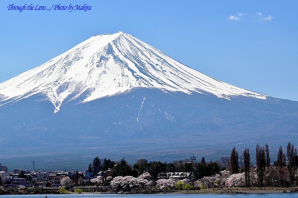 河口湖富士山56D2