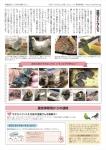 鳥の駅新聞ー2