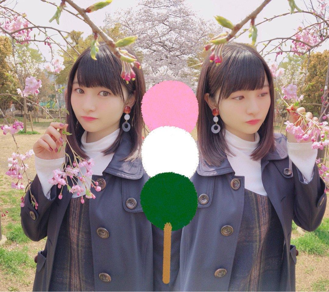 尾形春水 2019 桜 済み