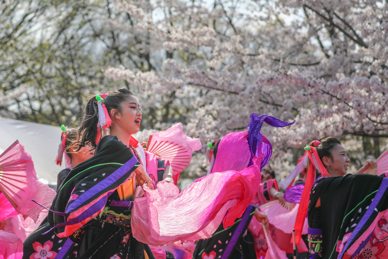 1440reika2019senbonsakura-11.jpg
