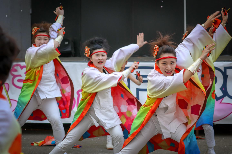 asakanarukoyuwa2019niiza-26.jpg