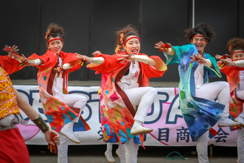 asakanarukoyuwa2019niiza-8.jpg