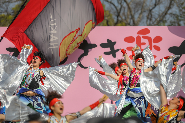 dancePhaku2019kawasakiraku-61.jpg