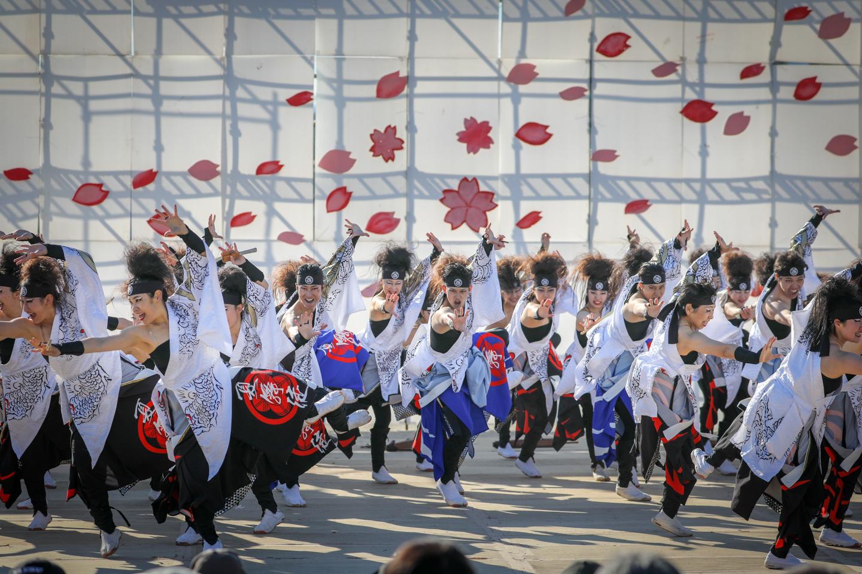 kabuto2019kanuma-15.jpg