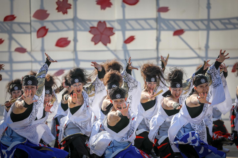 kabuto2019kanuma-19.jpg