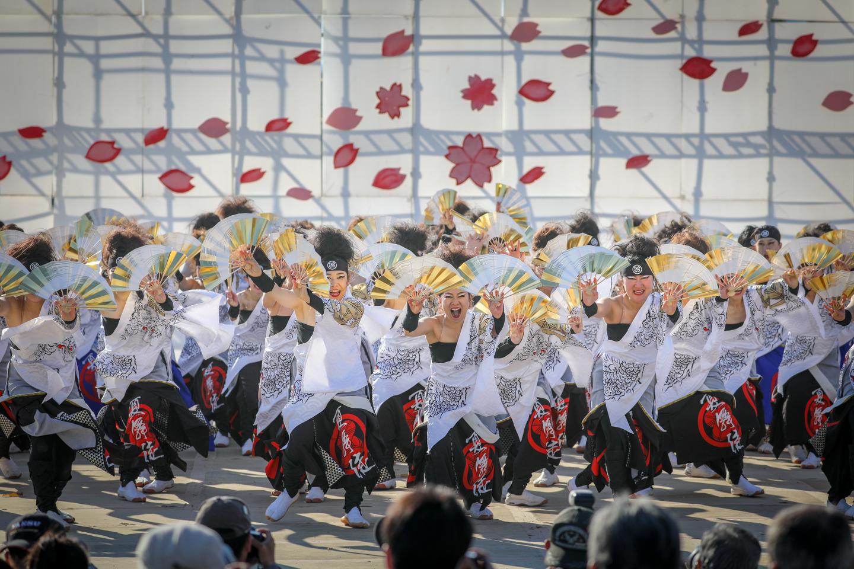 kabuto2019kanuma-21.jpg