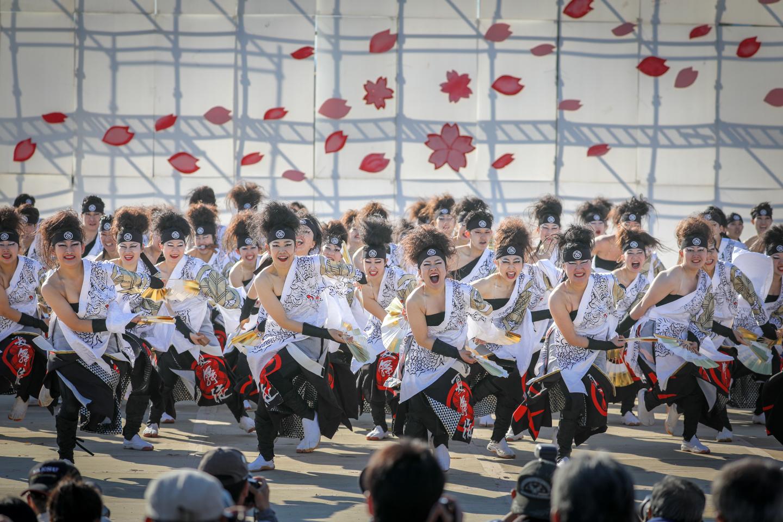 kabuto2019kanuma-22.jpg