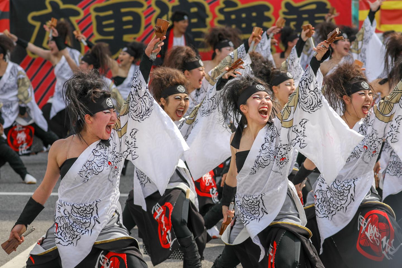 kabuto2019kisaradu01-12.jpg