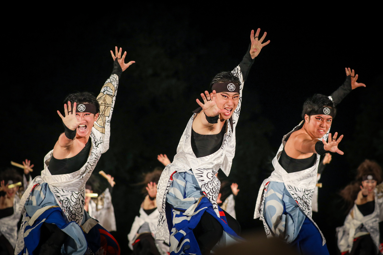 kabuto2019yosakoisf-24.jpg