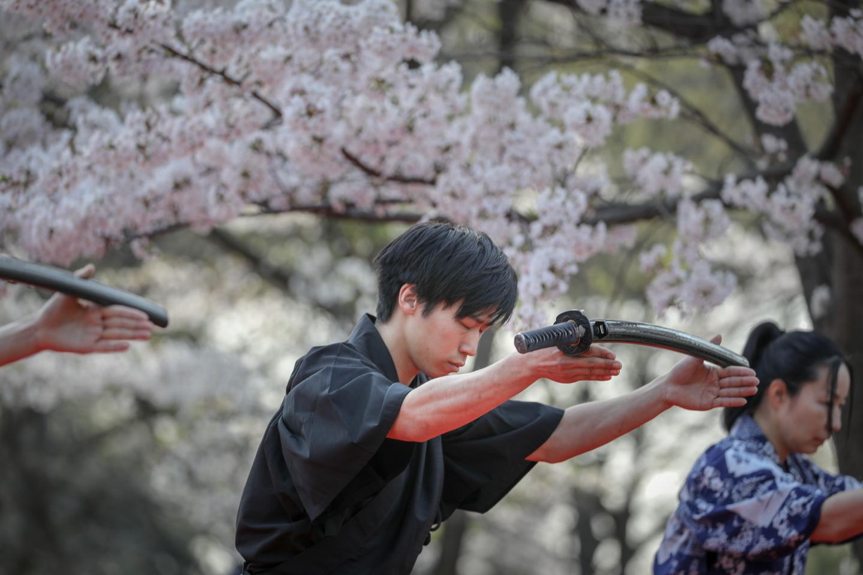 kengido2019tonerisakura-1.jpg