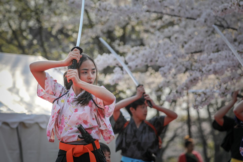 kengido2019tonerisakura-13.jpg