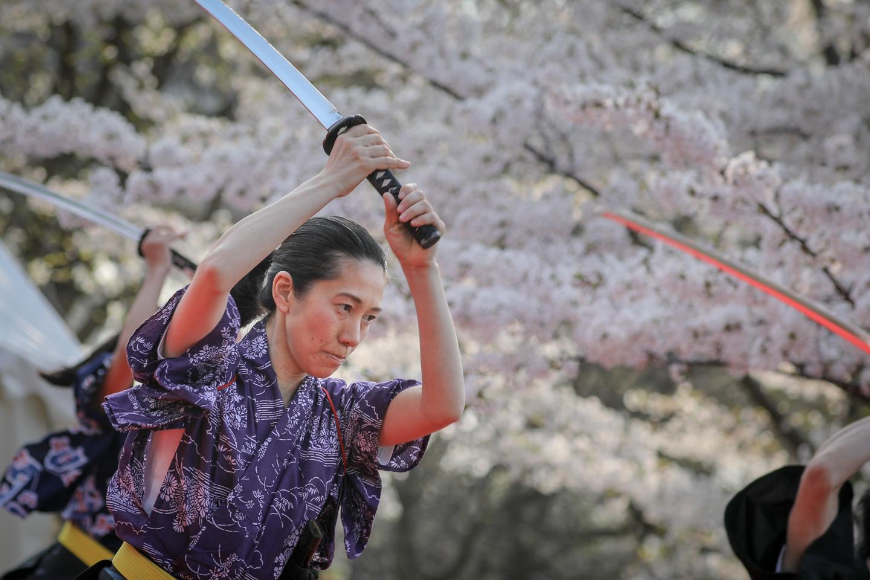 kengido2019tonerisakura-2.jpg