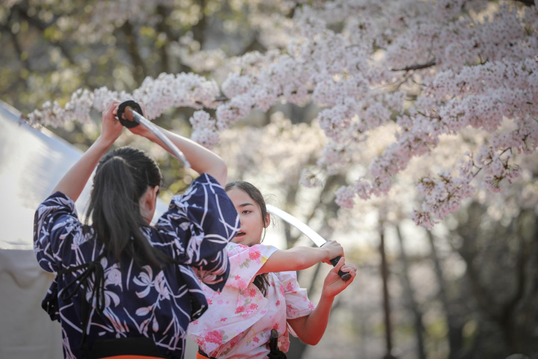 kengido2019tonerisakura-20.jpg