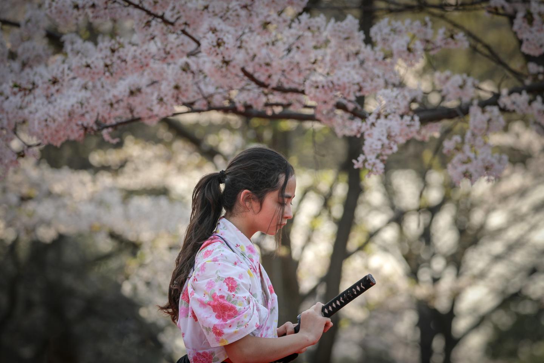 kengido2019tonerisakura-28.jpg