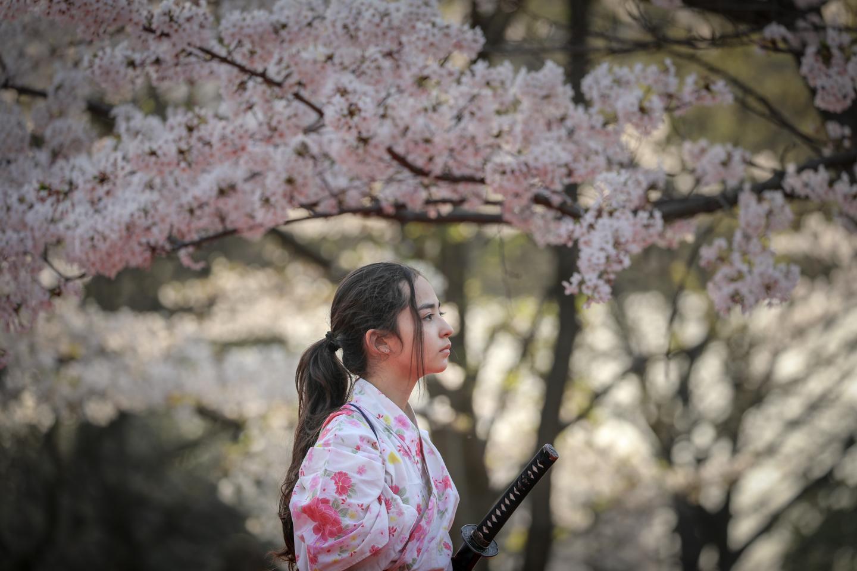 kengido2019tonerisakura-29.jpg