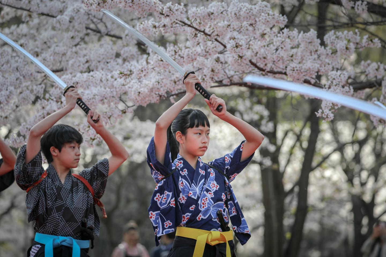 kengido2019tonerisakura-8.jpg