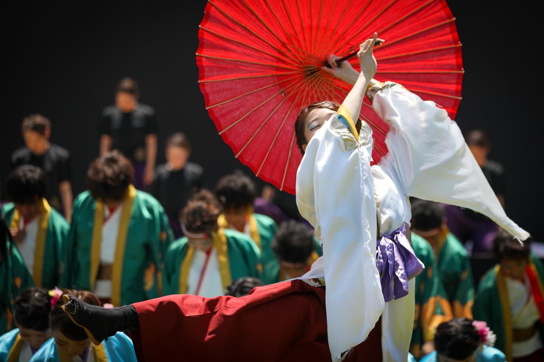 ochanokosaisai2019toyokawaoiden-19.jpg