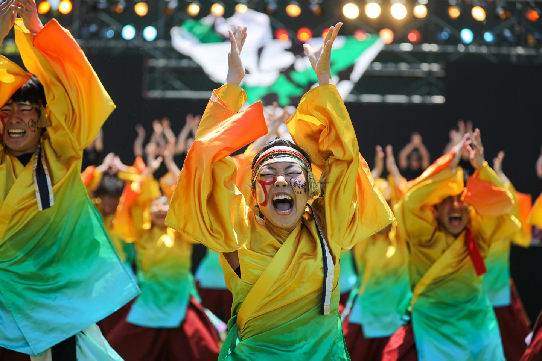 ochanokosaisai2019toyokawaoiden-21.jpg