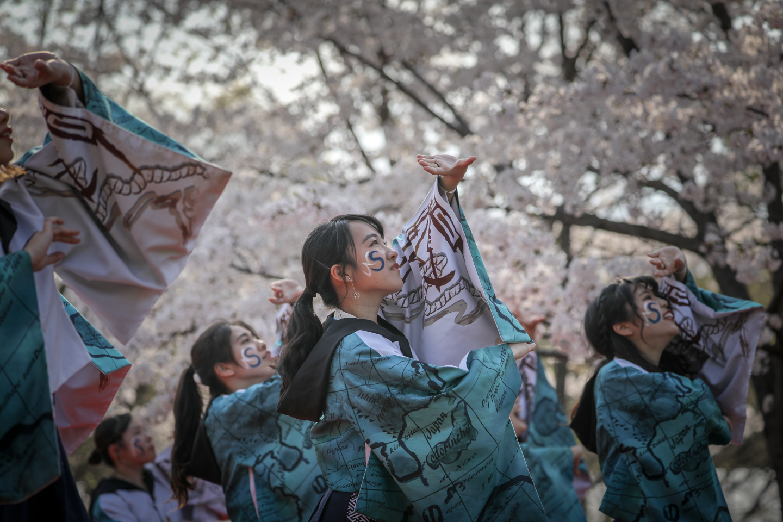 odorinchu2019tonerisakura-14.jpg