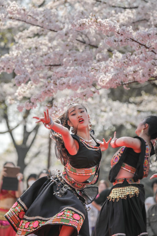 shanti2019tonerisakura-16.jpg