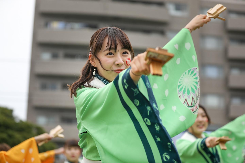 tokyohanabi2019yosakoisf-16.jpg