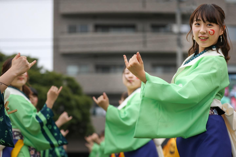 tokyohanabi2019yosakoisf-8.jpg