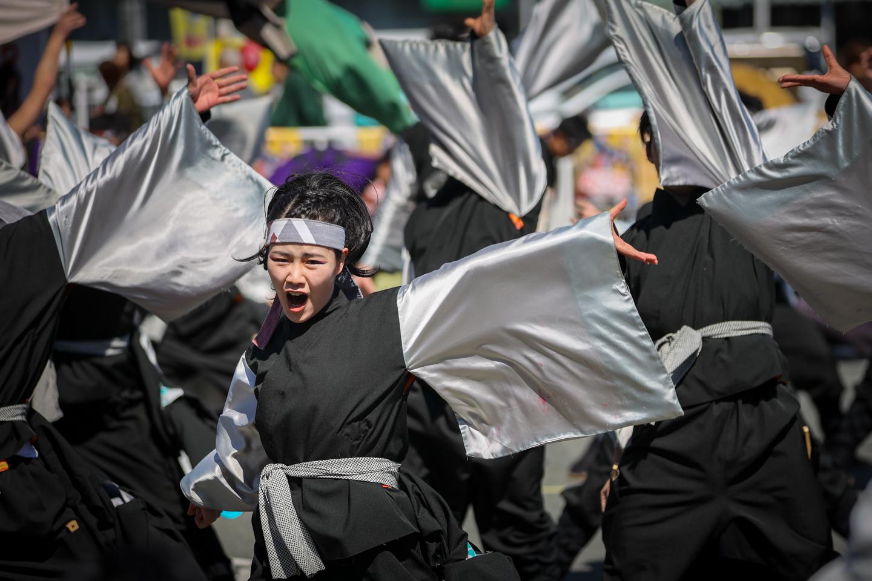 wasshoi2019hamayosa01-1.jpg