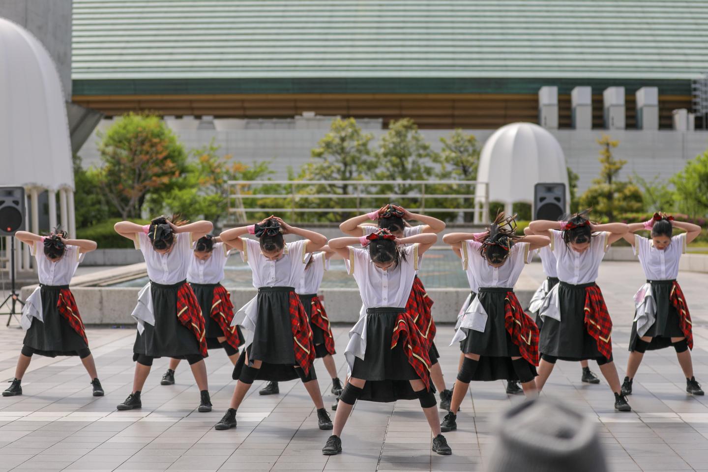 yumezakura2019ryogoku-2.jpg