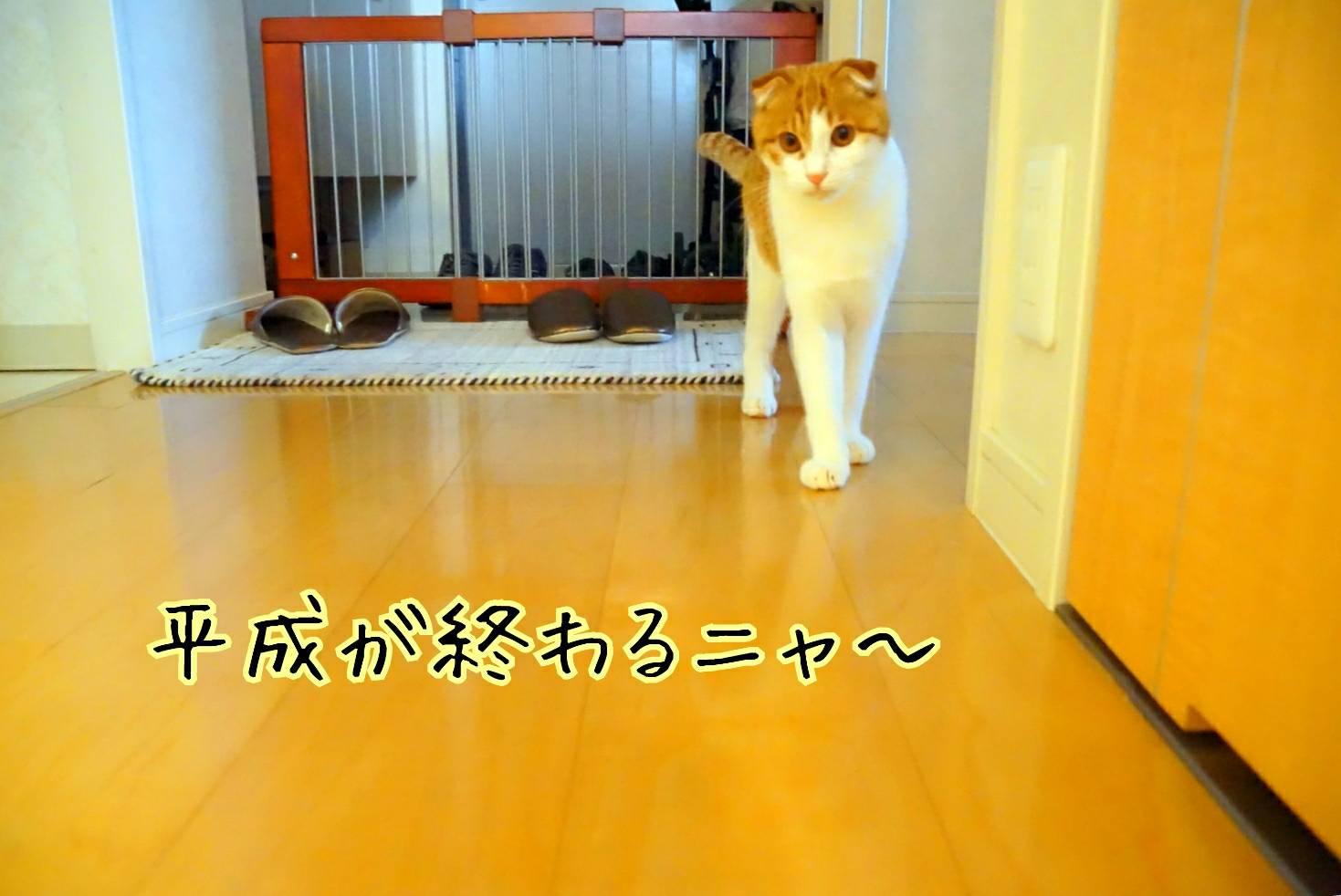 平成最後の日11
